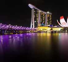 Singapore Light Art by Fern Blacker