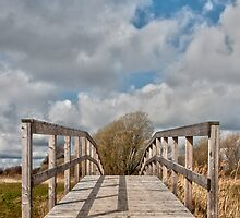 Wooden bridge by Ovation66