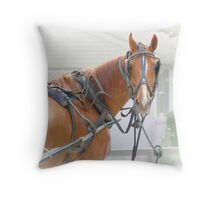 """""""All Decked Out"""" Throw Pillow"""