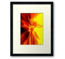 Phoenix Reborn Framed Print
