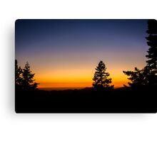 Sunset in the Sequoia Canvas Print