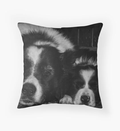 Sleeping Menaces Black and White Throw Pillow