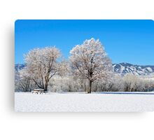 Morning After The Snowstorm Canvas Print