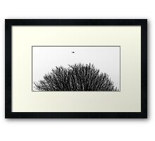 One Flew Over Framed Print