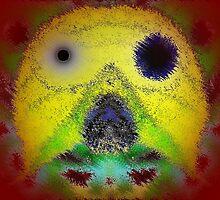 Weird Face by Irfan Gillani
