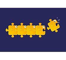 Puzzlefish Photographic Print