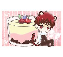 Tiger Kagami and Pudding Photographic Print