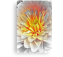 Dahlia Flower from Dark to Bright Canvas Print
