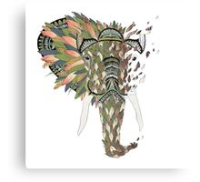 Asian Elephant Canvas Print