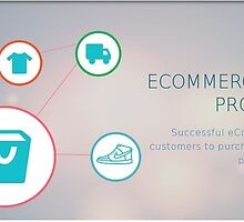 Ecommerce solutions provider for growing online business by Aarav D
