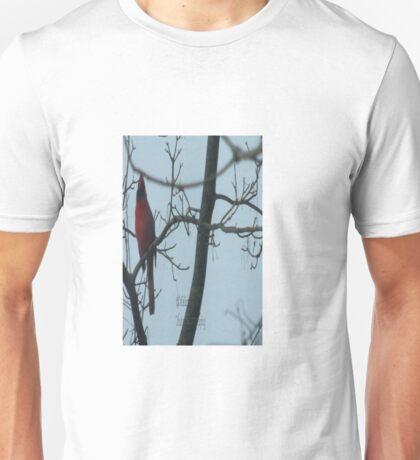 Mr C Unisex T-Shirt