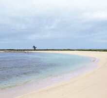 41 - The Beaches at Moray Pond by thebeachbook