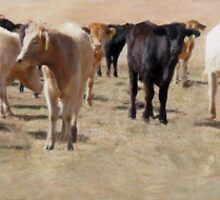 Cattle Drive by Brian Fowler