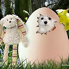Is it Easter Yet ? by Morag Bates