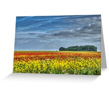 Summer Past Greeting Card