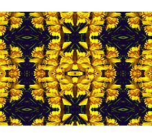 Kaleidoscopic Garden 8 Photographic Print