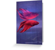 neon reflection Greeting Card