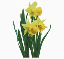 Daffodils Tall and Short Kids Clothes