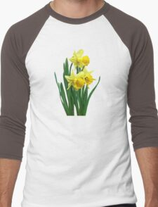Daffodils Tall and Short Men's Baseball ¾ T-Shirt