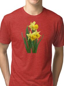 Daffodils Tall and Short Tri-blend T-Shirt