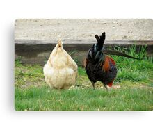 Fowl Butts Canvas Print
