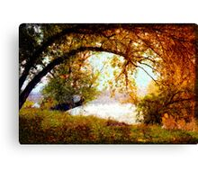 The giving Tree Canvas Print
