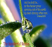 Tender Grass by aprilann