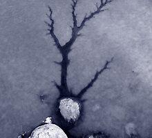 Ice Forest #1 by merrywrath