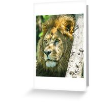 328 king of jungle Greeting Card