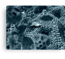Deep Sea Mystery Canvas Print