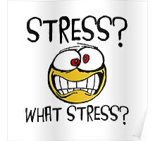 What Stress Poster