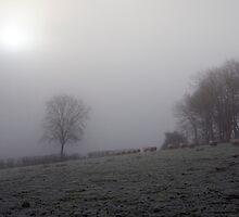 Foggy winter morning by imperfecteye