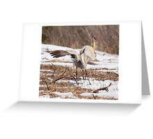 Dancing Crane Greeting Card