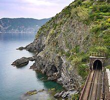 Tunnel Vision by danieldemellis