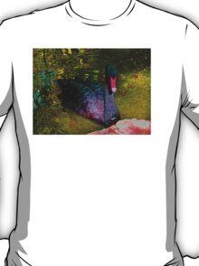 Brilliant, beautiful Black Swan T-Shirt