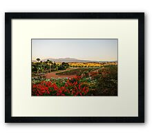 Ngorogoro Farmlands Framed Print