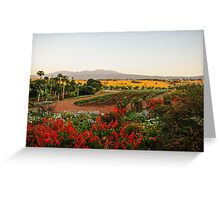 Ngorogoro Farmlands Greeting Card