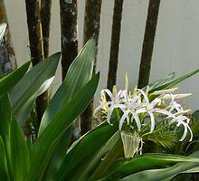 A Garden Like an Ikebana Flower Arrangement by Georgia Mizuleva