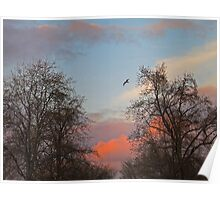 Sundown Storm Clouds Poster