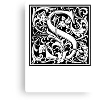 Decorative Letter S Canvas Print