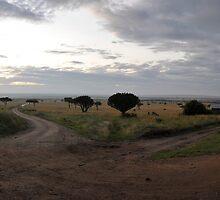Masai Mara panorama by Frits Klijn (klijnfoto.nl)