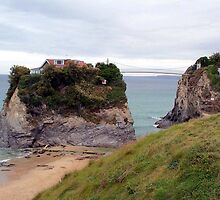 Cliffs at Newquay by hootonles