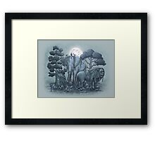 Midnight in the Stone Garden Framed Print