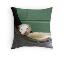 Tyred Ferret Throw Pillow