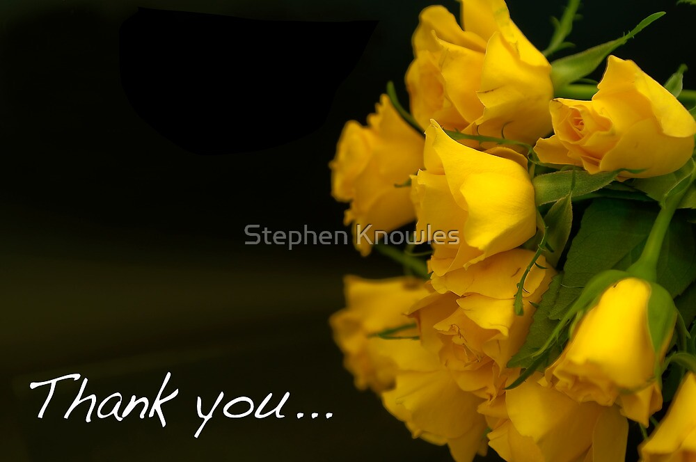 Flowers to say thank you! by Stephen Knowles