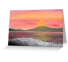 Daisies At Dawn Greeting Card