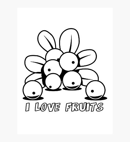 Cranberry Fruit organic fruit Photographic Print