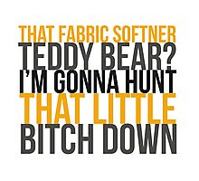 Fabric Softner Teddy Bear Photographic Print
