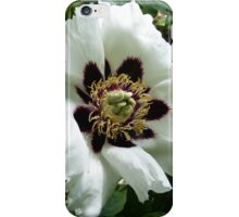 Chinese Tree Peony iPhone Case/Skin