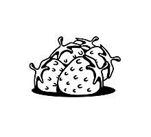 Strawberry fruit sweet bio Photographic Print